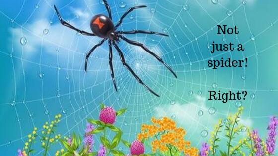 Just A Spider Sir..!
