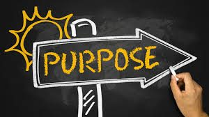 What's Your Purpose In Being Alive?