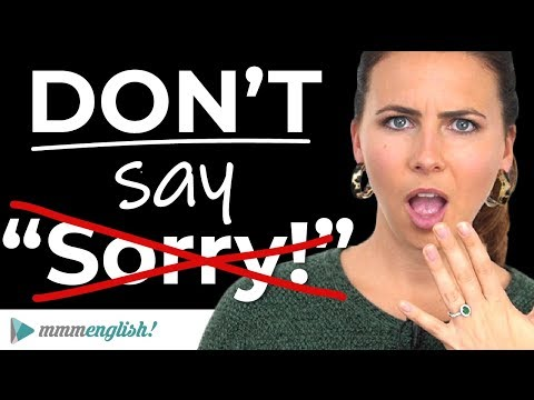 Say Sorry Please..!